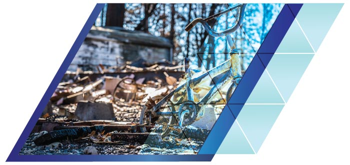 Wildfire Cleanup and Recovery